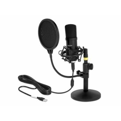 DeLock USB Condenser Microphone Set for Podcasting and Gaming